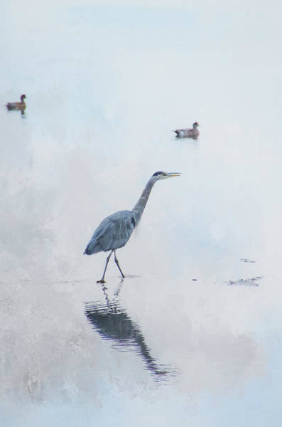 Photograph - Walking In Calm Waters - Textured by Marilyn Wilson