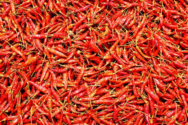 Photograph - Thai Peppers  by Fabrizio Troiani