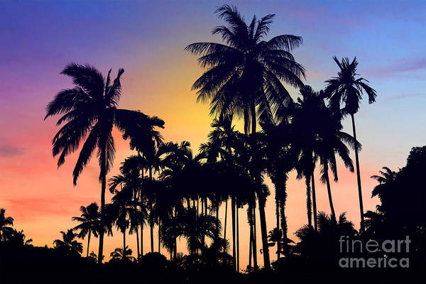 Tropical Photograph - Thailand by Mark Ashkenazi