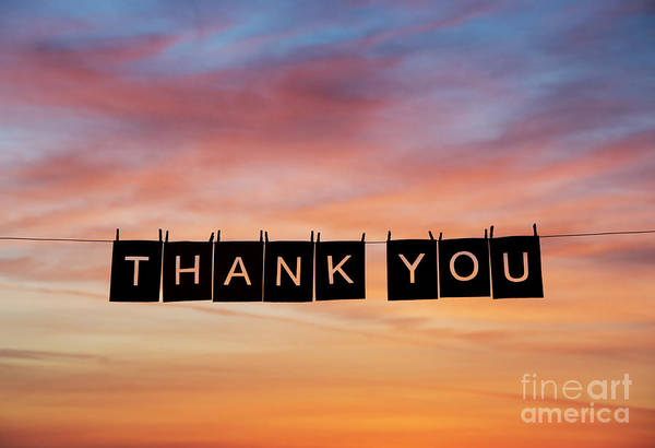 Language Photograph - Thank You by Tim Gainey