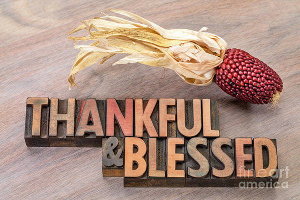 Photograph - thankful and blessed - Thanksgiving theme by Marek Uliasz