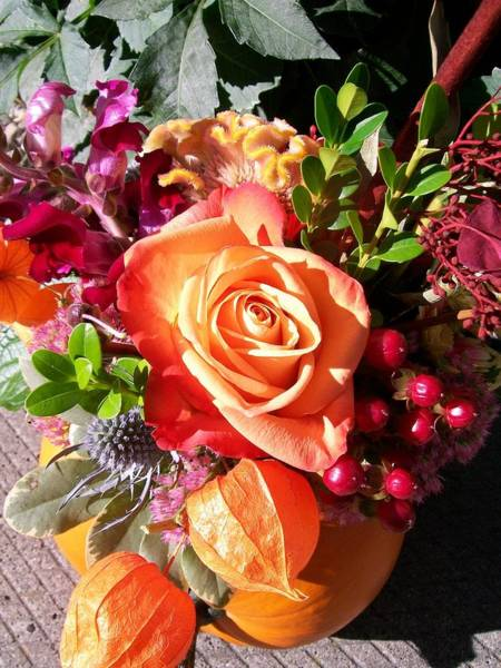 Photograph - Thanksgiving Bouquet by Sharon Duguay