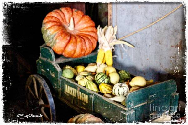 Thanksgiving  Harvest      Art Print