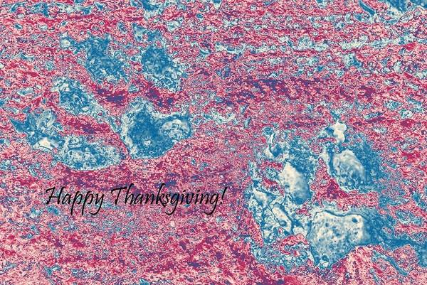 Photograph - Thanksgiving Paw Prints by Dorothy Berry-Lound