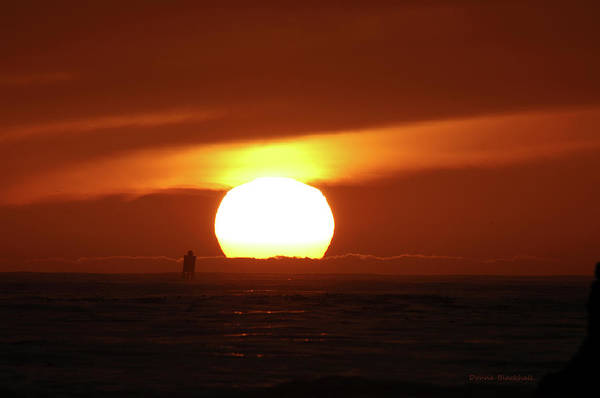 Photograph - That Blazing Sun by Donna Blackhall