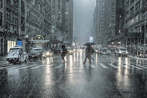 Photograph - That Day It Snowed by Alison Frank