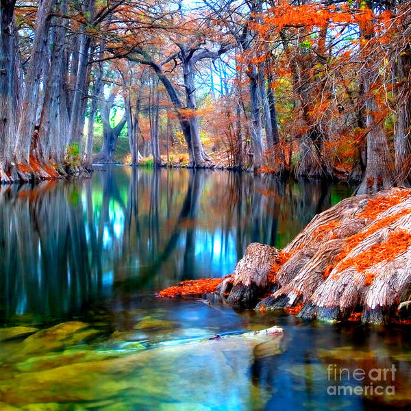 Texas Landscape Photograph - That For Which I'm Thankful by Katya Horner