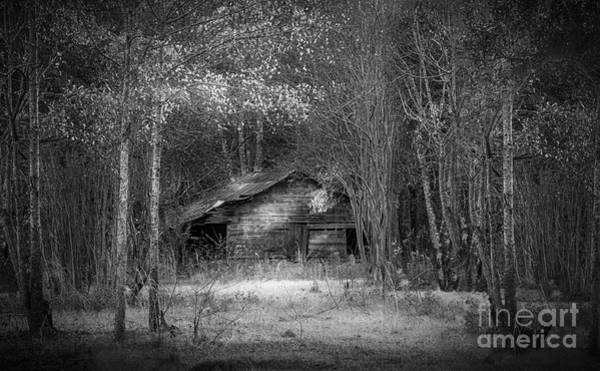 Tin Roof Wall Art - Photograph - That Old Barn-bw by Marvin Spates