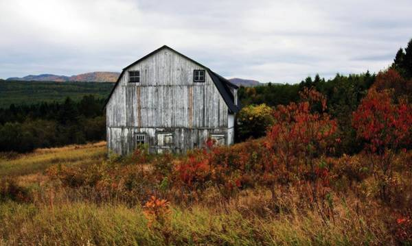 Photograph - That Old Barn by Tatiana Travelways