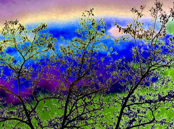 Wall Art - Digital Art - That Special Place by Will Borden