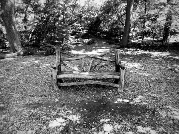 Photograph - That Weird Bench One by Robbie Masso