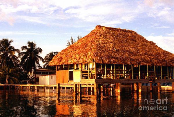 Photograph - Thatched Roof Placencia by Thomas R Fletcher