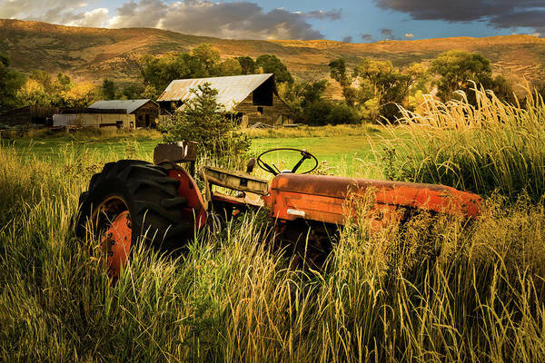 Photograph - The Abandoned Tractor - 2 by TL Mair