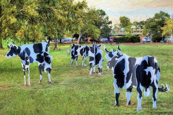 Digital Art - The Abilene Cows by JC Findley
