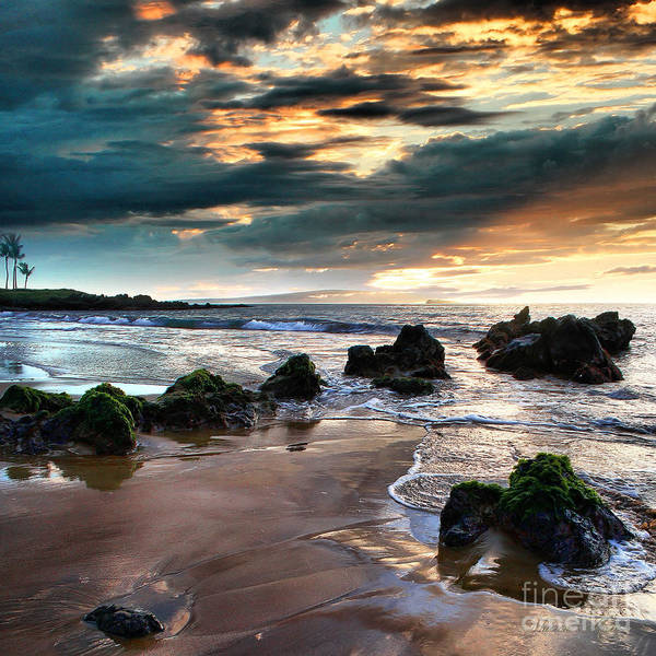 Maui Sunset Wall Art - Photograph - The Absolute by Sharon Mau