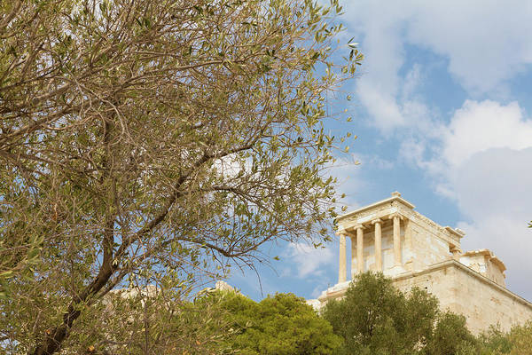 Wall Art - Photograph - The Acropolis Of Athens In Greece Behind An Olive Tree by Iordanis Pallikaras
