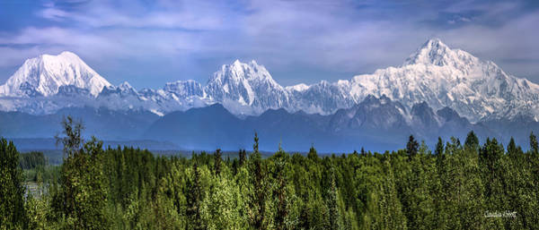 Photograph - The Alaska Range by Claudia Abbott