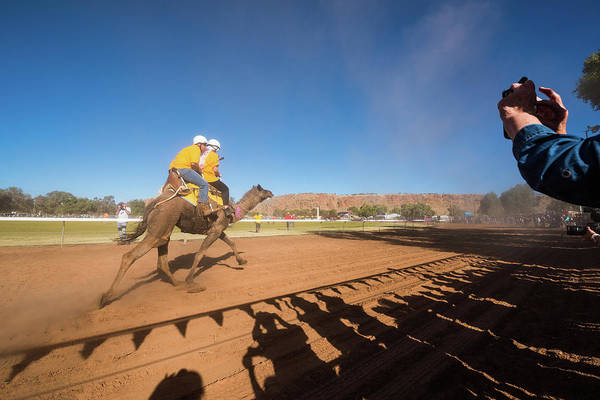 Photograph - Alice Springs Camel Cup by Racheal Christian