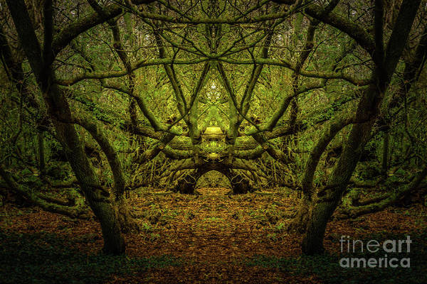 Photograph - The Altar by Roger Monahan