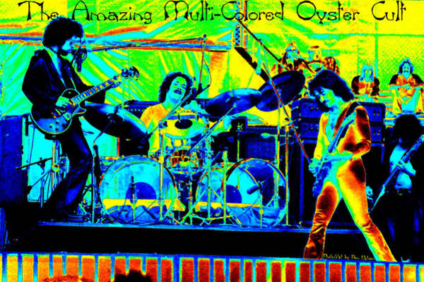 Photograph - The Amazing Multi-colored Oyster Cult by Ben Upham