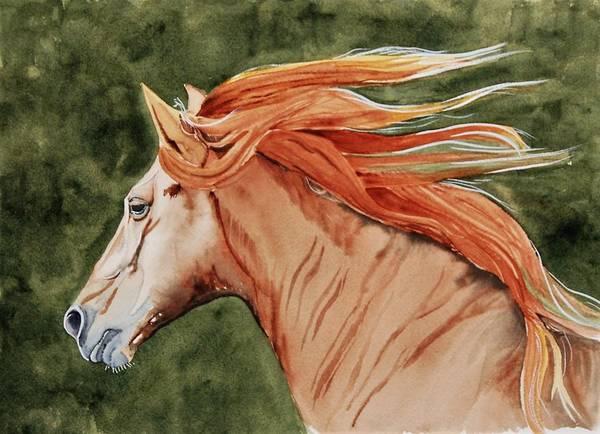 Painting - The Americano by Sonja Jones