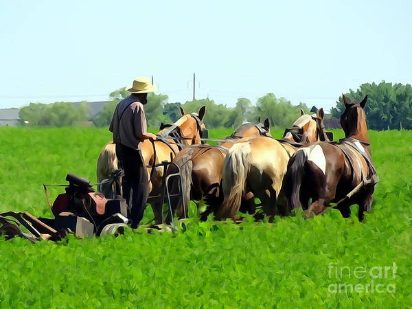 Amish Country Digital Art - The Amish Life by Ed Weidman