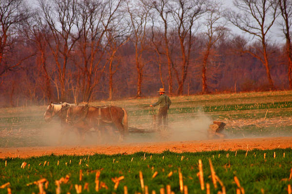 Amish Country Photograph - The Amish Way by Scott Mahon
