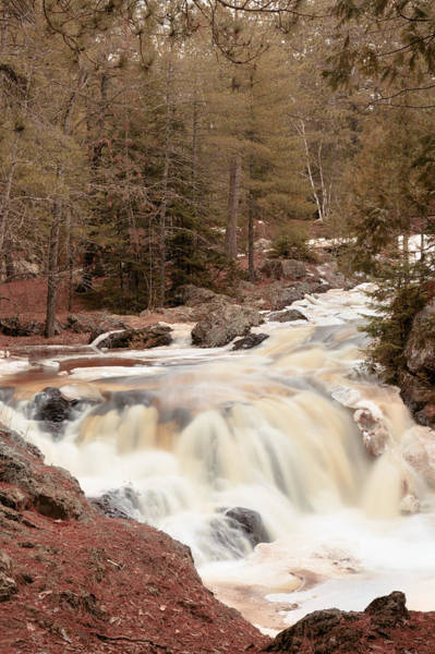 Photograph - The Amnicon River by Susan Rissi Tregoning