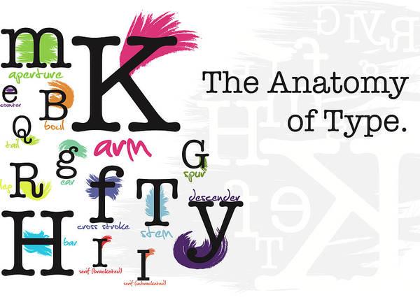 Serif Digital Art - The Anatomy Of Type by Karissa DeYoung