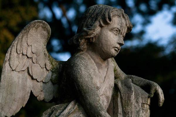 Cementery Photograph - The Angel by Marta Grabska