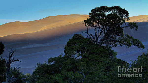 Photograph - The Anthill by Jim Garrison