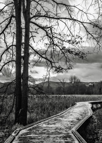 Vernon County Photograph - The Appalachian Trail by Eduard Moldoveanu