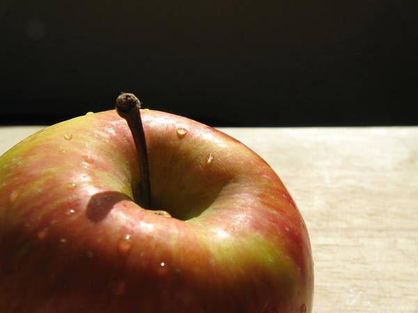 Red Apple Photograph - The Apple Stem by Kim Pascu