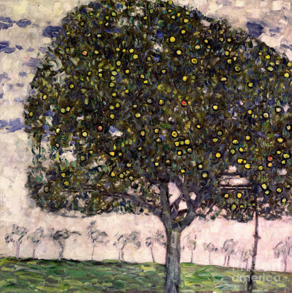 Apple Orchard Painting - The Apple Tree II by Gustav Klimt