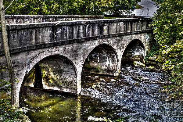 Photograph - The Arches by William Norton