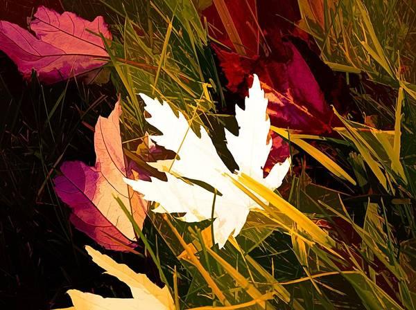 I Phone Case Mixed Media - The Art Of Autumn by Debra Lynch