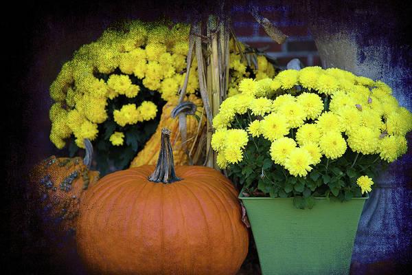 Photograph - the Art of Autumn by Milena Ilieva