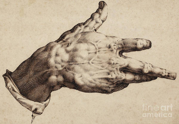 Baroque Drawing - The Artist's Right Hand by Hendrik Goltzius