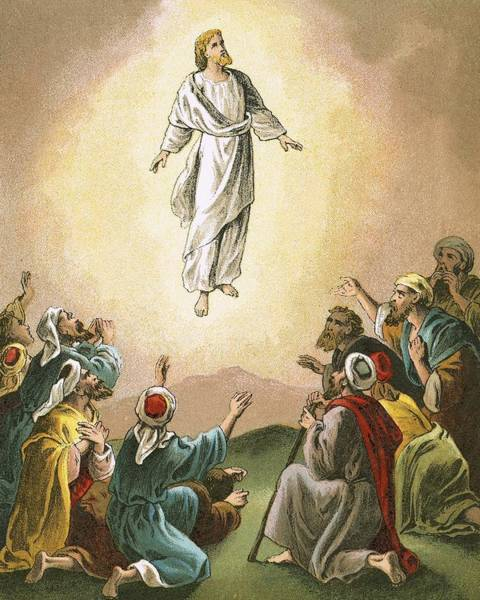 Ascension Painting - The Ascension by English School