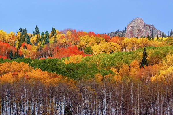 The Autumn Blanket Art Print