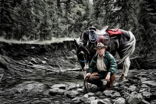 Photograph - The Back Country Guardian by Brad Allen Fine Art