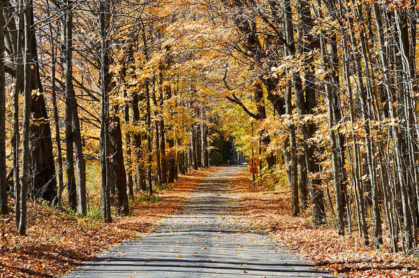 Southern Ontario Photograph - The Back Road In Autumn by Louise Heusinkveld