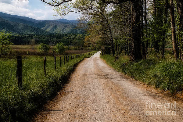 Hillside Wall Art - Digital Art - The Backroad by Elijah Knight