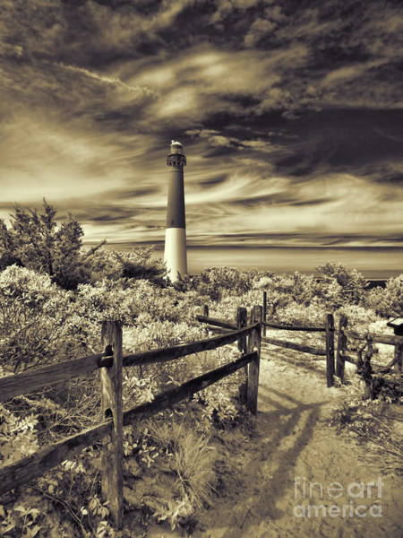 Photograph - The Barnegat Lighthouse New Jersey by Jeff Breiman