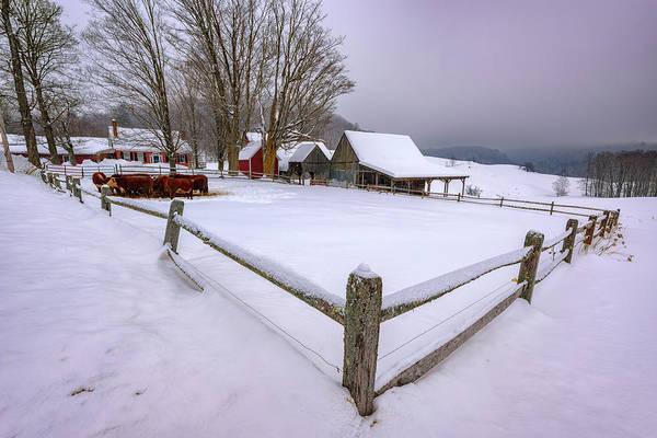 Photograph - The Barnyard At Jenne Farm by Rick Berk