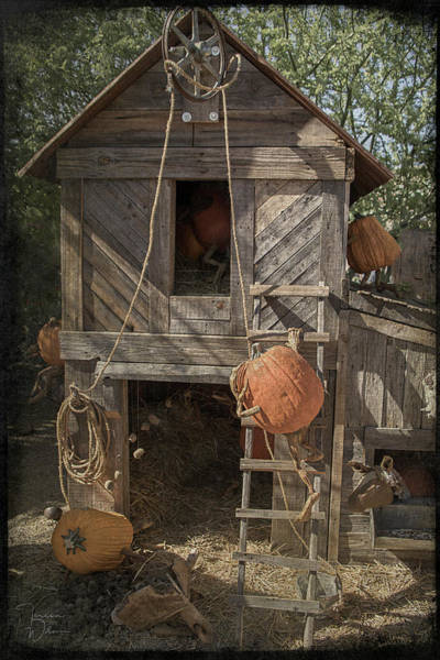 Photograph - The Barnyard by Teresa Wilson