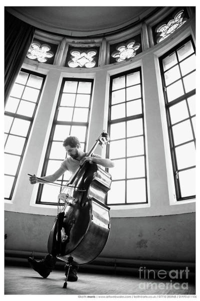 Photograph - The Bass Player by Keith Morris