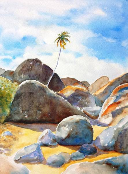 Painting - The Baths Palm Tree by Carlin Blahnik CarlinArtWatercolor