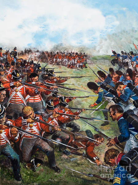 The Clash Wall Art - Painting - The Battle Of Waterloo, 1815 by Clive Uptton
