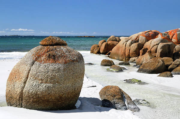 Photograph - The Bay Of Fires by Nicholas Blackwell